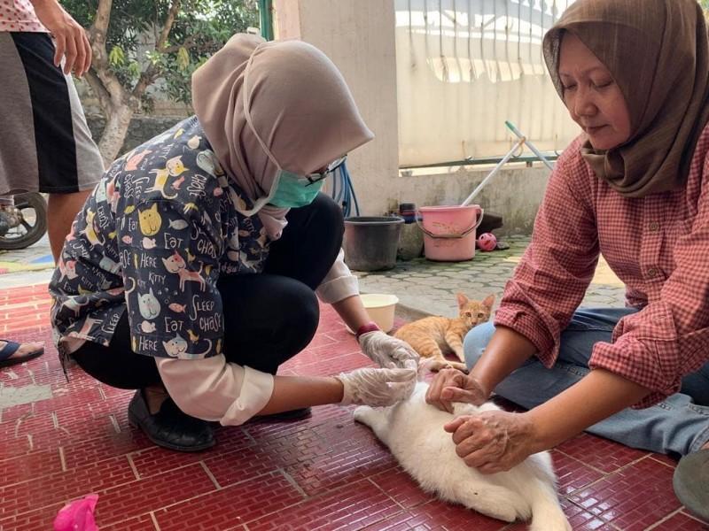 dkp-beri-pelayanan-klinik-hewan-gratis