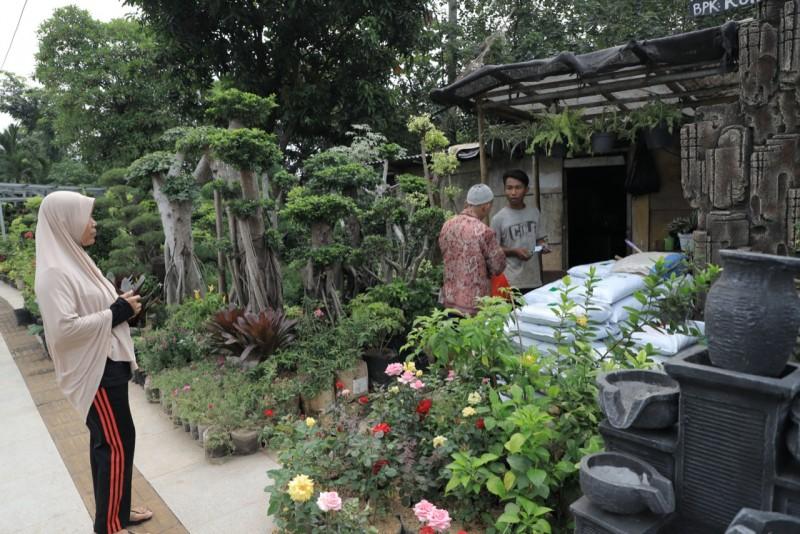 meski-pandemi-penjual-tanaman-hias-tetap-optimis-bisa-bertahan