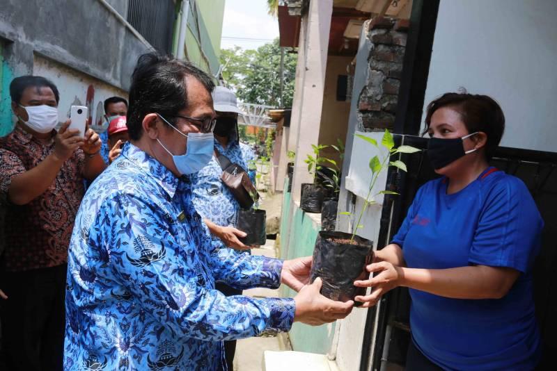 IMG-jaga-ketahanan-pangan-saat-pandemi-dkp-bagikan-bibit-tanaman-produktif