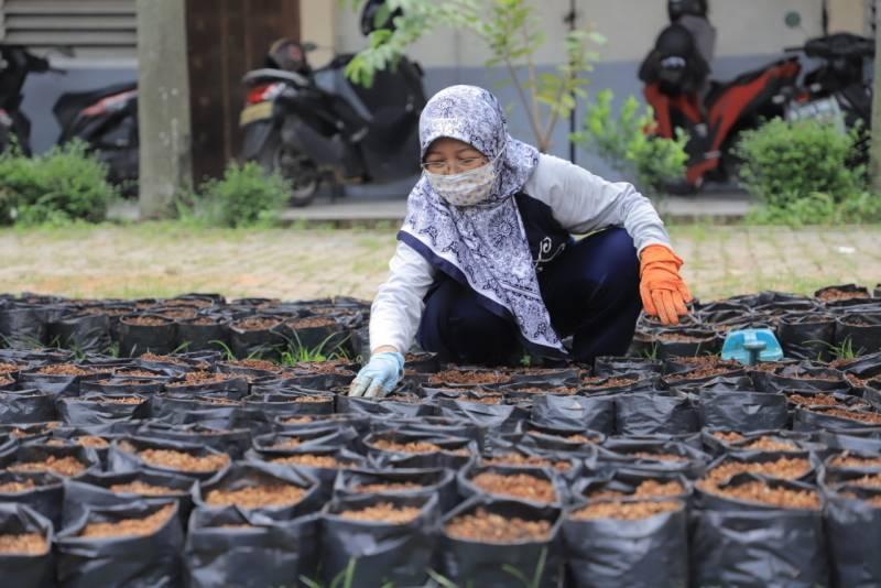 para-pegawai-dilatih-pembibitan-tanaman