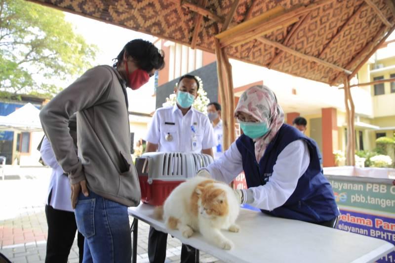 dkp-layani-vaksinasi-keliling-gratis-untuk-hewan-peliharaan